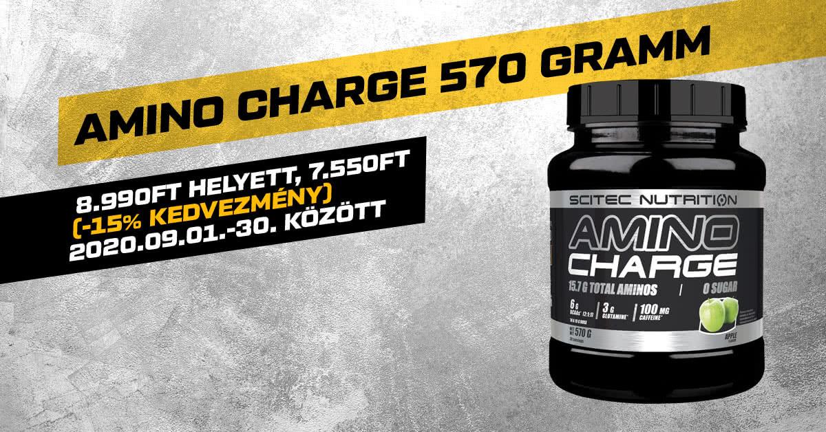 Amino Charge 570 gramm