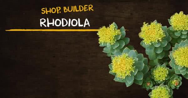 A rhodiola előnyei a fogyás