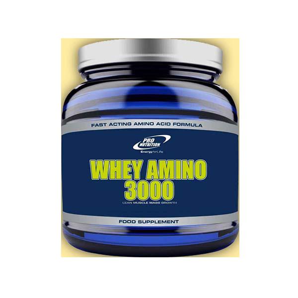 Pro Nutrition Whey Amino 3000 120 tab.