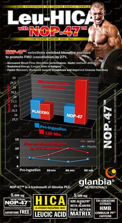 Amix Leu-HICA™with NOP- 47™ 450 gr.