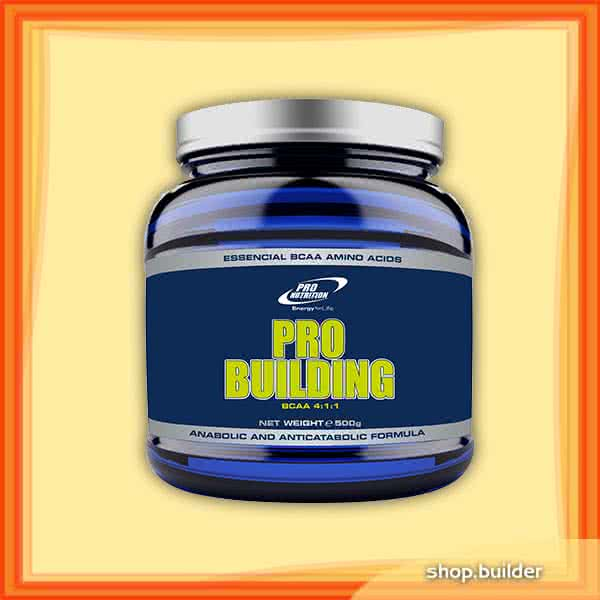 Pro Nutrition Pro Building (BCAA 4:1:1) 500 gr.